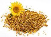 Flower pollen — Stock Photo
