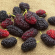 Sweet mulberry — Stock Photo