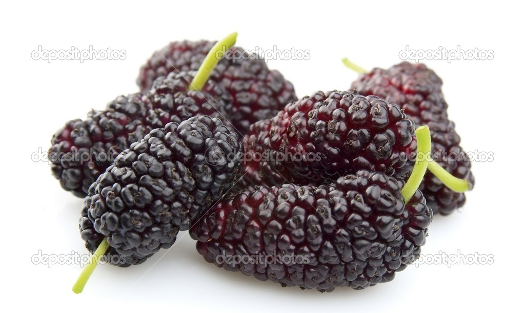 Sweet mulberry on a white background  — Stock Photo #6070030