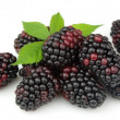 Постер, плакат: Juice blackberry