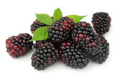 Juice blackberry — Stock Photo