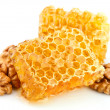 Honey honeycombs with a walnut — Stock Photo