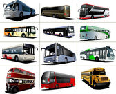 Twelve kinds of city buses. Vector illustration — Stock Vector