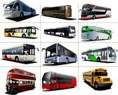 Twelve kinds of city buses. Vector illustration — Stock Vector