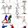 Oriental combat sports. The sportsman in a position. Wushu. Kung — Stock Photo