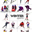Big set of Winter sports. Vector illustration — Stock Photo #5864365