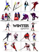 Big set of Winter sports. Vector illustration — Zdjęcie stockowe