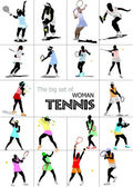 Big set of Woman Tennis player. Colored Vector illustration for — Stock Photo