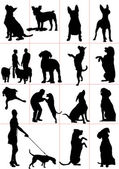 Set of dogs silhouette. Vector illustration — Stock Photo