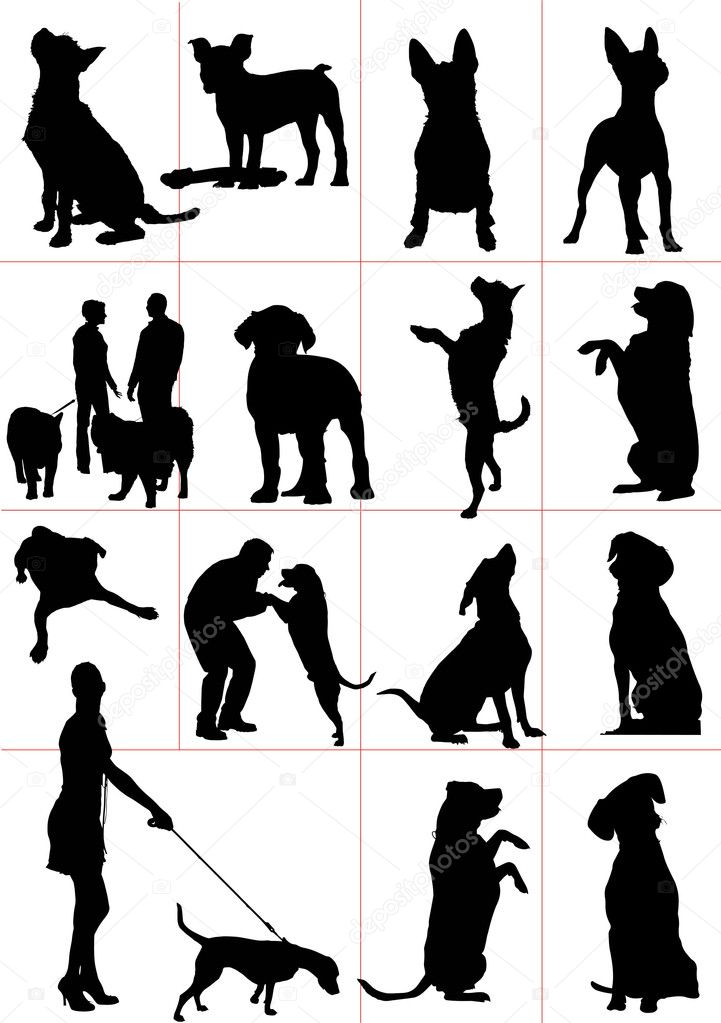Set of dogs silhouette. Vector illustrationv — Stock Photo #5865001