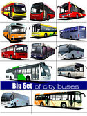 Big set of city buses. Coach. Vector illustration — Stock Vector