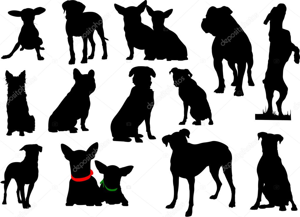 Big set of dog silhouettes. Vector illustration — Stock Vector #6664011