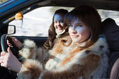 Women in fur coat is driving car — Stock Photo