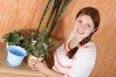 Woman replants Pachypodium cactus — Stock Photo