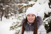Girl in wintry pine forest — Stok fotoğraf