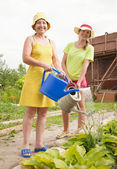 Women watering flowers — Stock Photo
