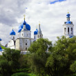 Monastery in Bogolyubovo — Stock Photo #5713108