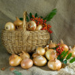 Stock Photo: Onion in basket