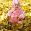 Royalty-Free Stock Photo: Baby sits in an autumn park