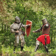 Knights in armor is fights — Stock Photo #5716435