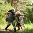 Fighting knights — Stock Photo #5716530