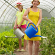 Two women watering vegetables — Stock Photo #5717941