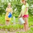 Women watering with watering pot — Stock Photo #5717942