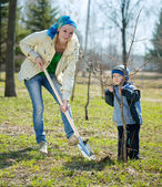 Mother and son planting tree — Stock Photo