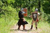 Knights battle — Stock Photo