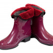 Waterproof gum boots — Stock Photo