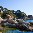 Coastline in Costa Brava — Stock Photo #5723504