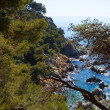 Costa Brava landscape — Stock Photo