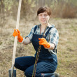 Stock Photo: Female farmer planting sprouts
