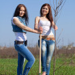 Stock Photo: Women planting tree outdoor
