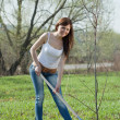 Stock Photo: Gardener planting tree in spring