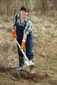Female farmer planting shrubbery — Stock Photo