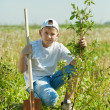 Teenager boy   planting tree — Stock Photo