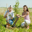 Teenager brother and sister sets tree — Stock Photo