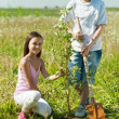 Boy and girl planting tree — Stock Photo
