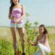 Woman with  teenager daughter setting tree — Stock Photo