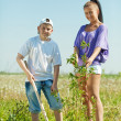 Royalty-Free Stock Photo: Mother and  teen boy planting tree