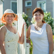 Stock Photo: Women near fence wicket