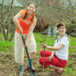 Female gardeners planting tree — Stock Photo #6038172