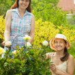 Two female gardeners in roses — Stock Photo #6039156