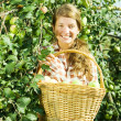 Young farm girl picking apples - Stock Photo