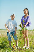 Mother and teen boy planting tree — Stock Photo