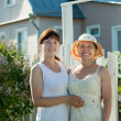 Stock Photo: Women near fence wicket of home