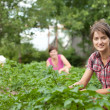 Women working in field of potato — Stock Photo #6044691