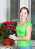 Woman with Poinsettia flowers — Stock Photo