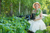 Mature woman with Parthenocissus tricuspidata sprouts — Stock Photo